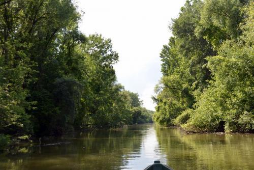 Titkos vízi ösvények