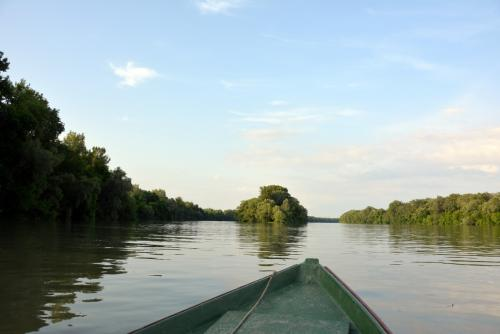 Tisza-folyó